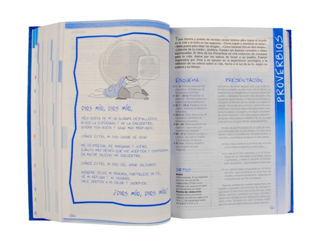 Biblia Católica para Jóvenes cartoné L. G. / 2 tintas c/i-378