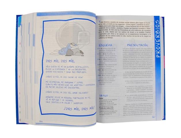 Biblia Católica para Jóvenes rústica / 2 tintas s/i-382
